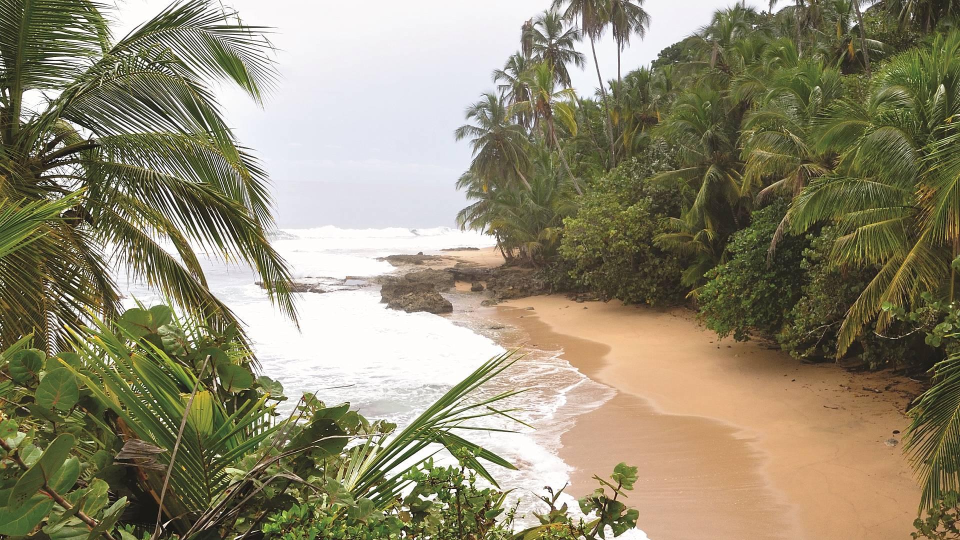 Höhepunkte Costa Ricas und tropische Strände