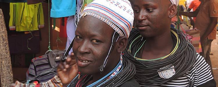Combinatiereis Benin en Burkina Faso
