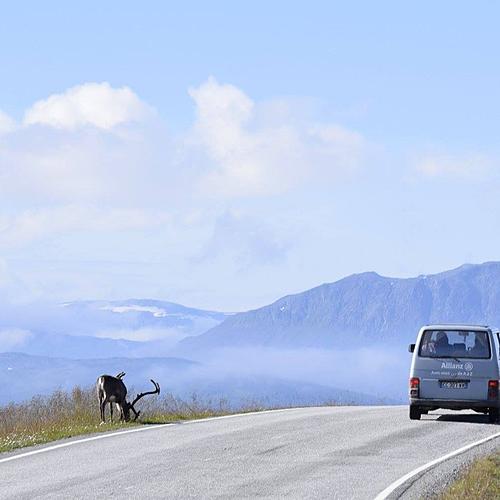 Laponie, Cap Nord et îles Lofoten -
