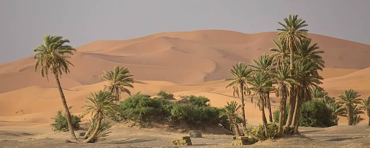 Il deserto e le oasi di montagna