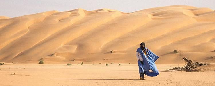 Du désert de l'Adrar aux rivages du banc d'Arguin