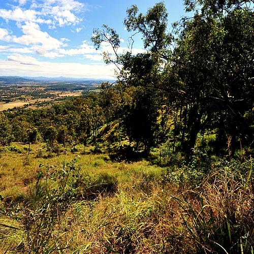 Aventure et découverte - Brisbane -