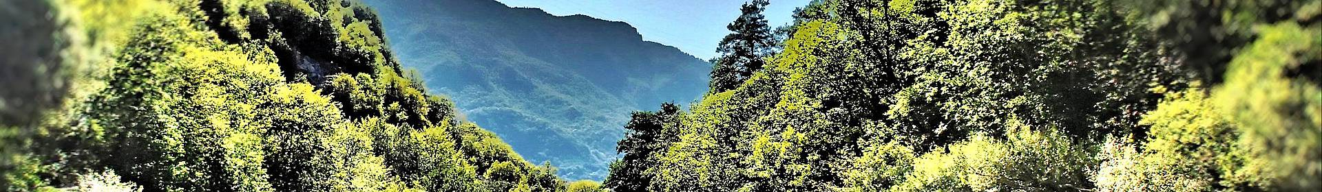 Canyon Tara