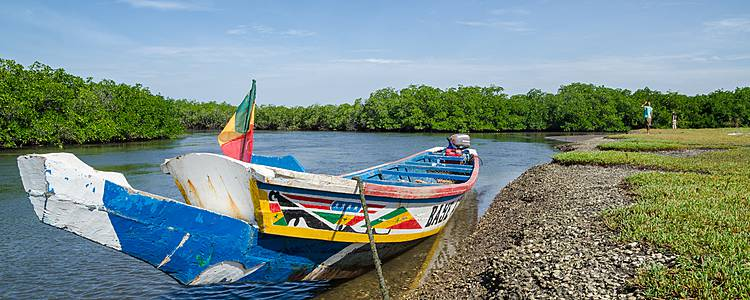 L'essentiel du Sénégal