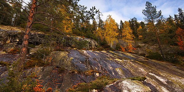 Parc National de Koli