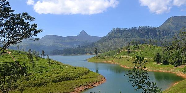 Sur la route du Pic d'Adam au Sri Lanka