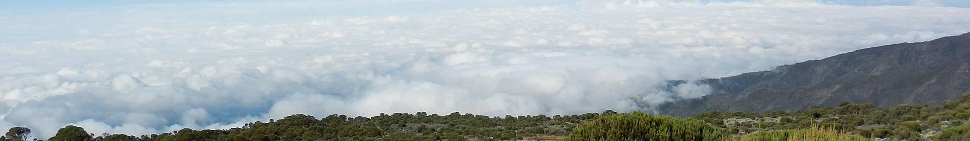 Shira Plateau