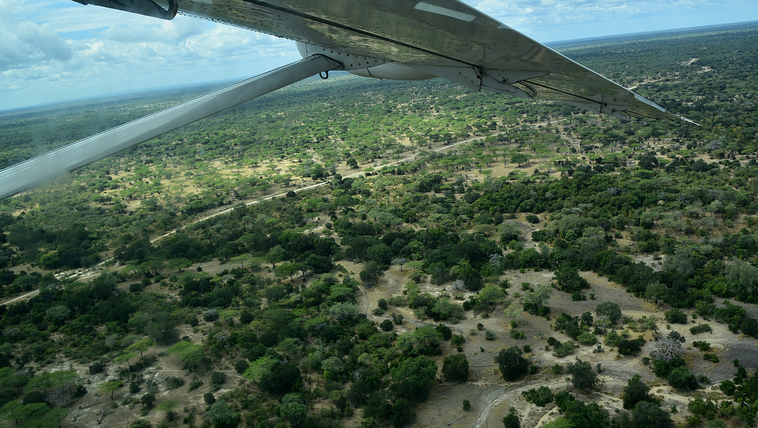 Image Fly In safari, luxe sous le ciel africain
