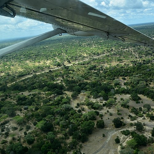 Fly In safari, luxe sous le ciel africain - Arusha -
