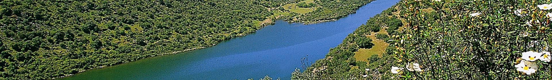 Parc naturel Tejo