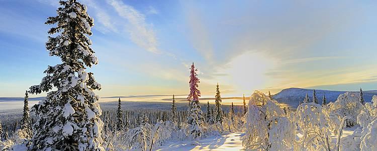 Magie de l'hiver en Laponie