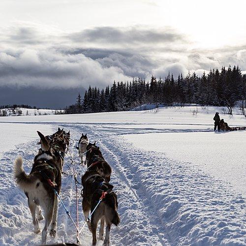 L'odyssée du Nord -