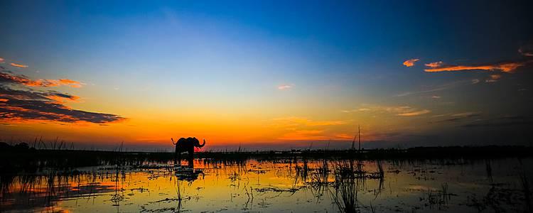Safari de charme entre terres et rivières