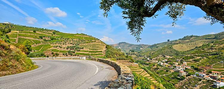 La route des vins autour de Porto