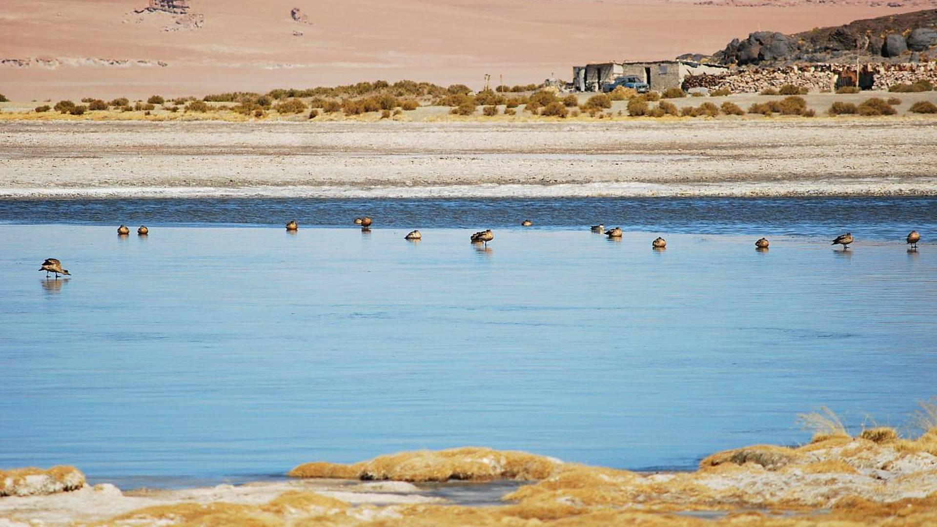 Spedizioni nel profondo dell'Atacama,tra cielo e terra
