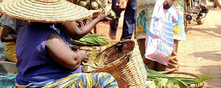 Combinatiereis Togo en Benin, ontdek de hoogtepunten