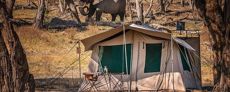 Camping-Safari zwischen Kalahari, Okavango Delta und Chobe River
