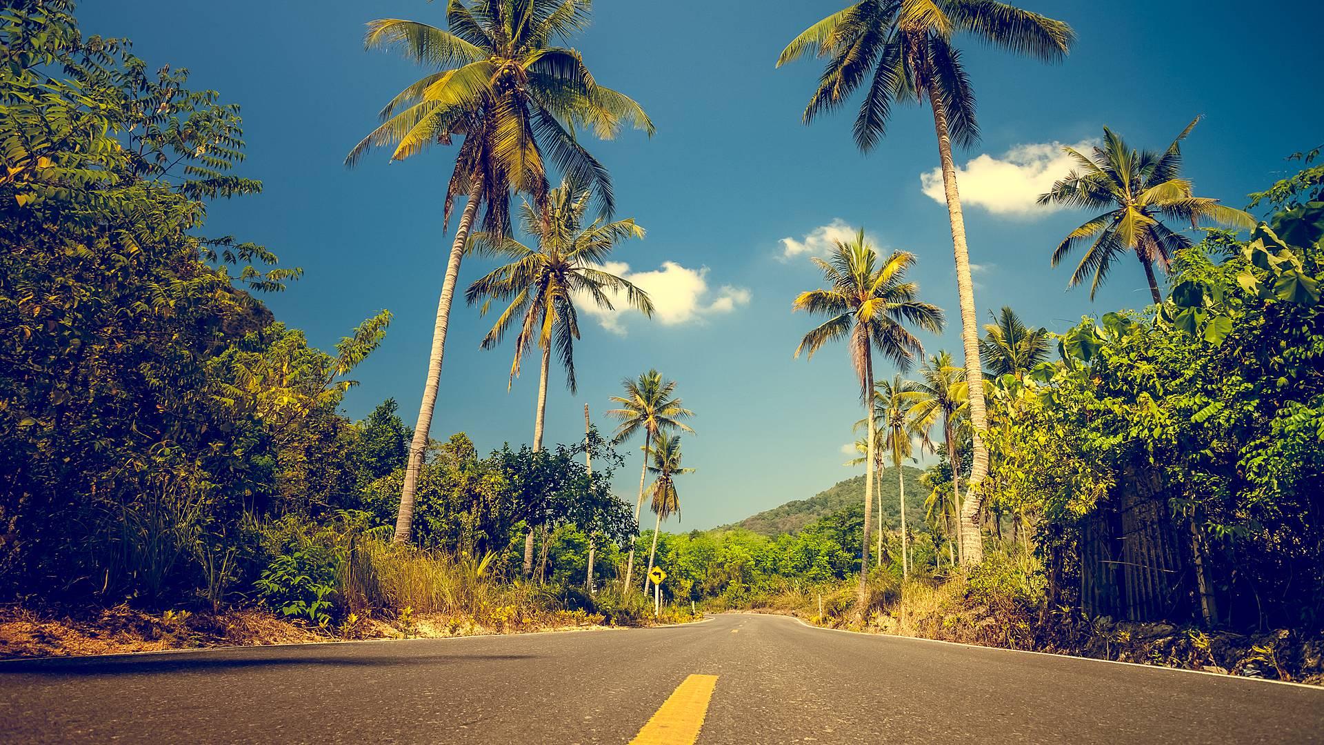 Road trip à votre rythme