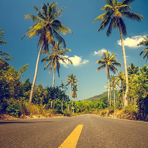 Road trip à votre rythme - Montego Bay -