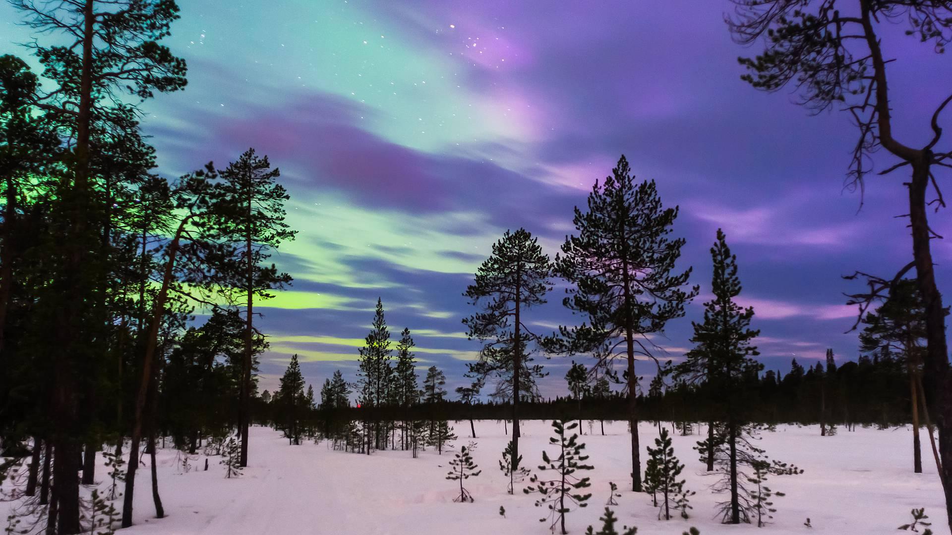 Winterliches Sankt Petersburg und Polarlichter in Murmansk