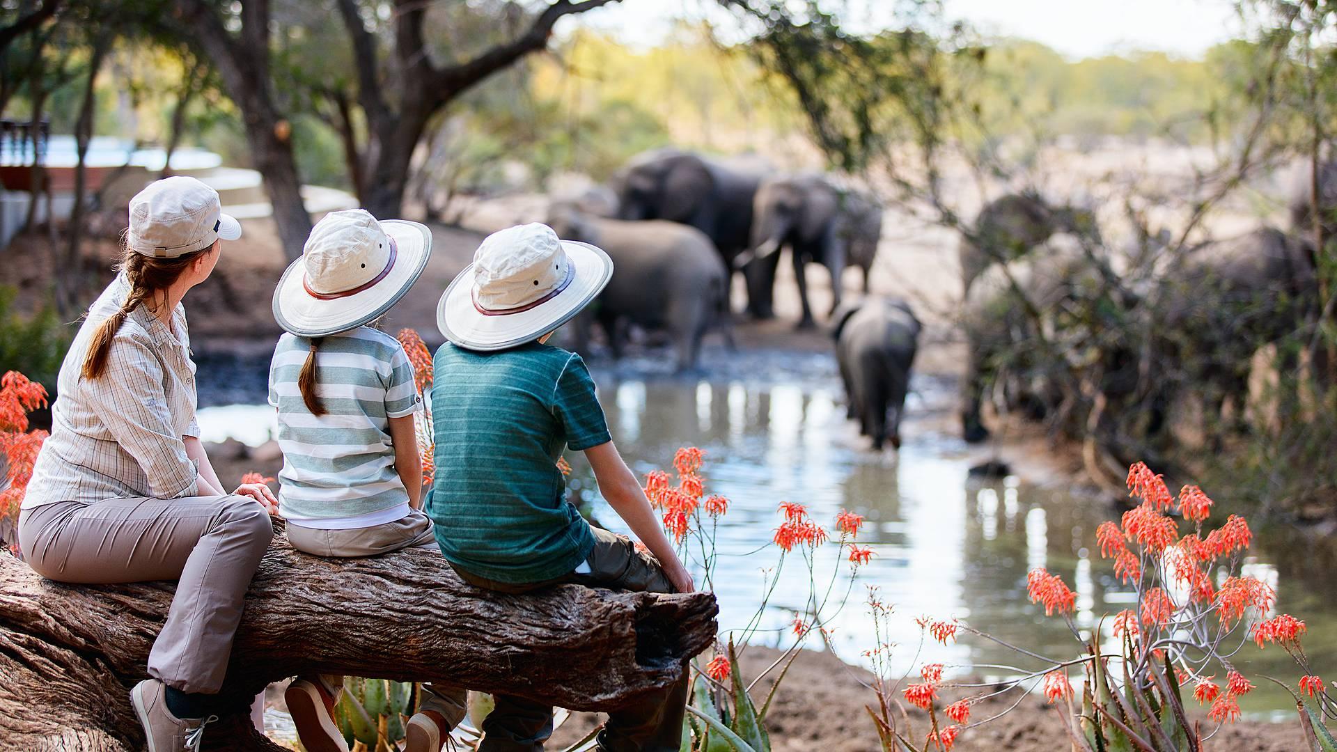 Familienreise durch Namibia und Botswana