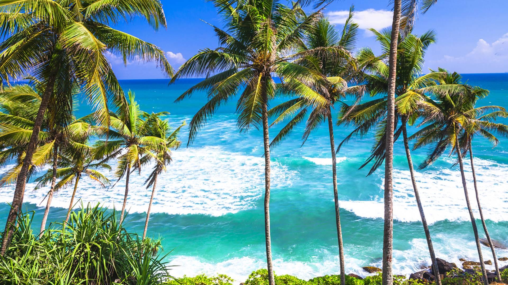 Natur, Kultur und Strand