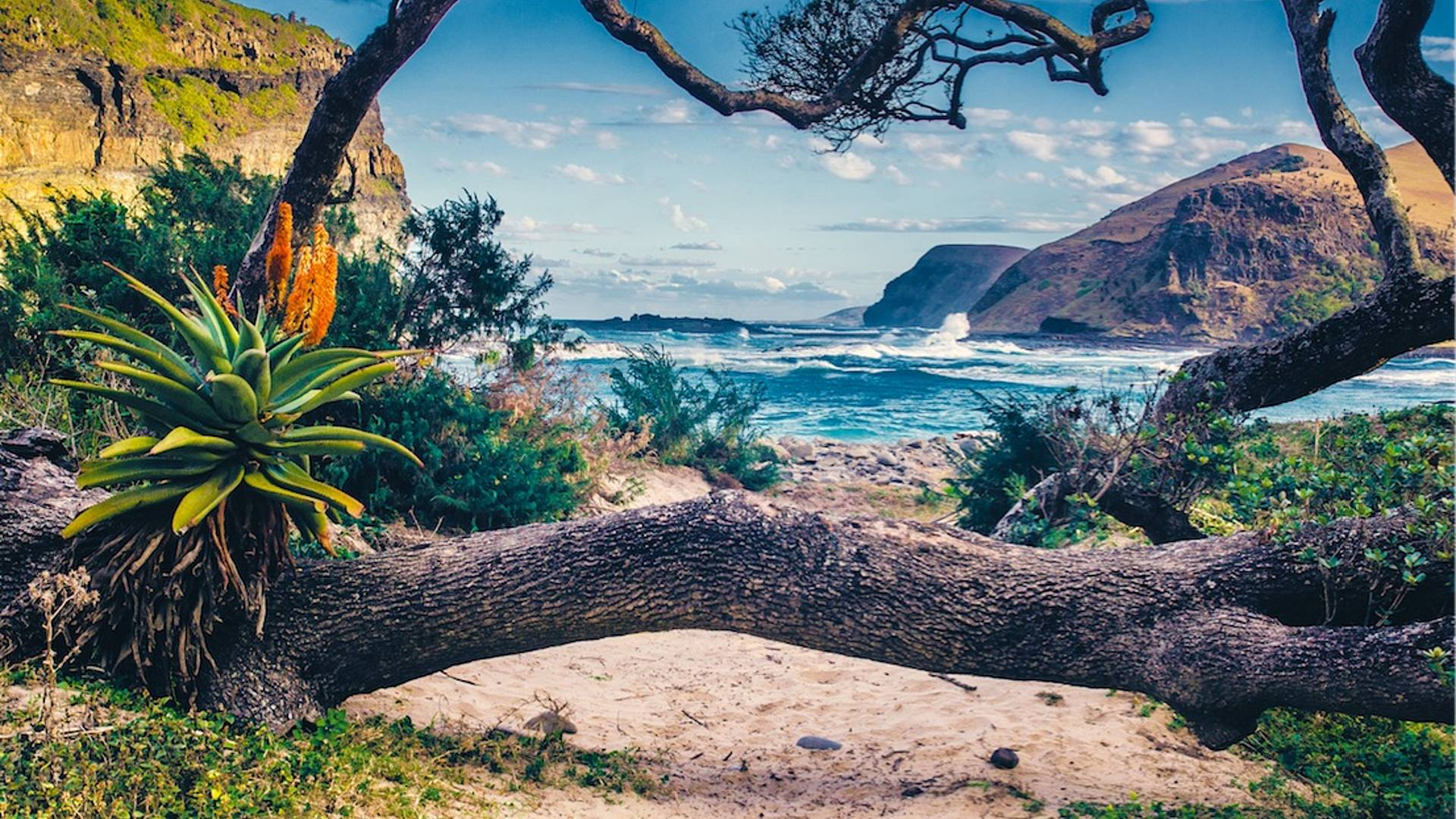 Garden Route off the beaten track - Natur pur