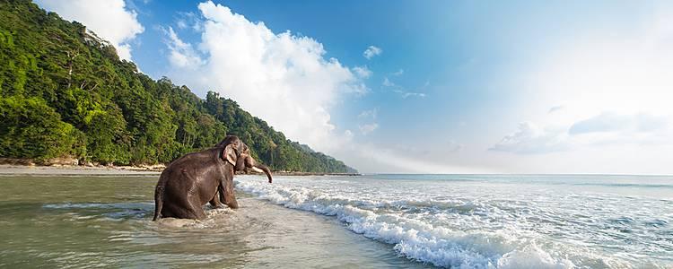 Kombination mit den Andamanen