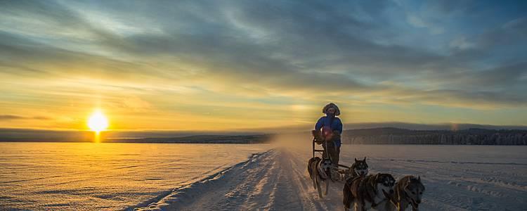 Abenteuer rund um den Polarkreis
