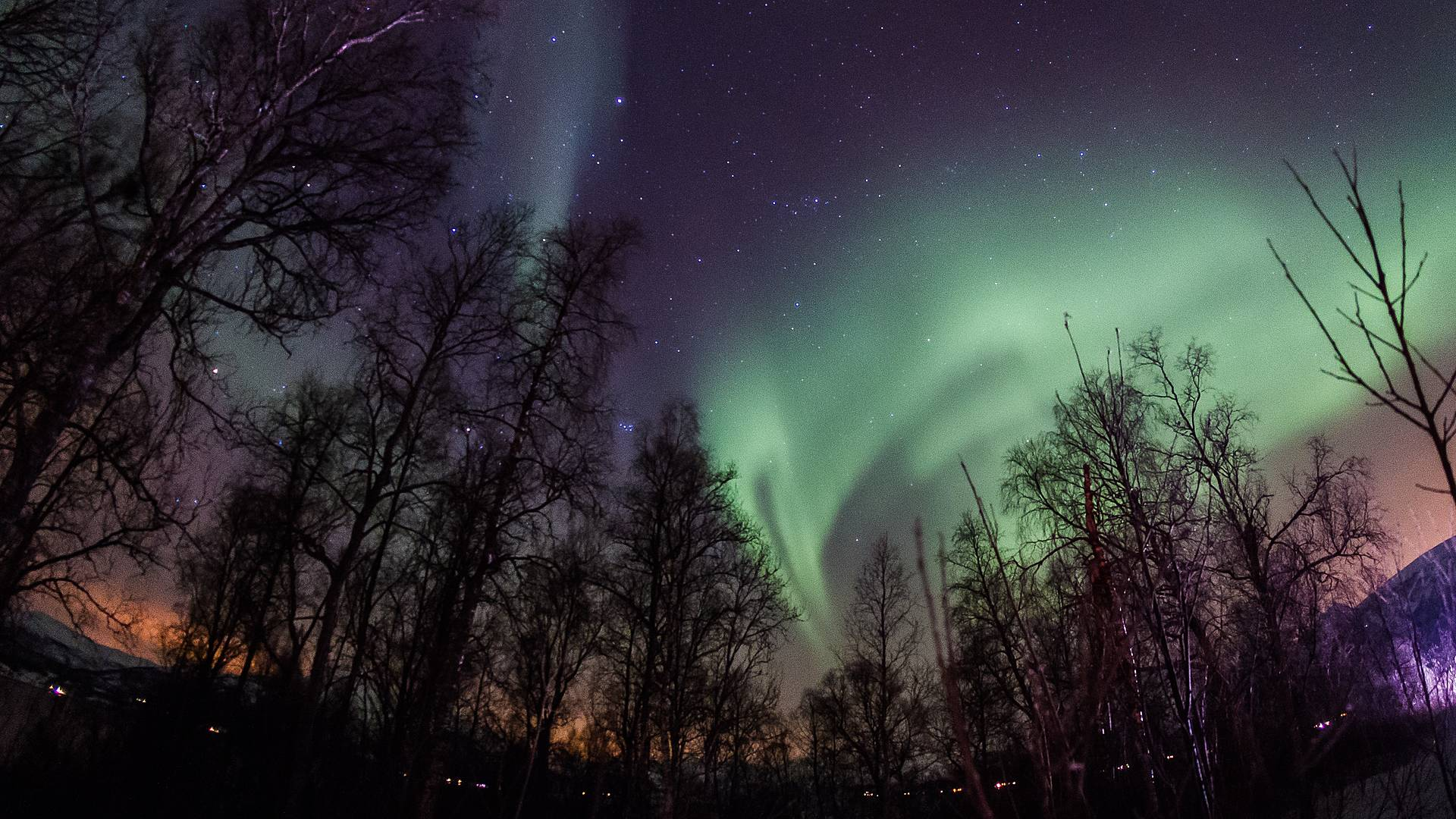 Nordische Glanzlichter von den Lofoten bis Tromsø