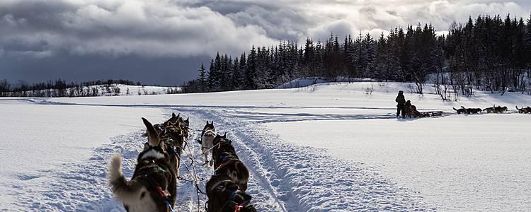 Winterabenteuer in Tromsø