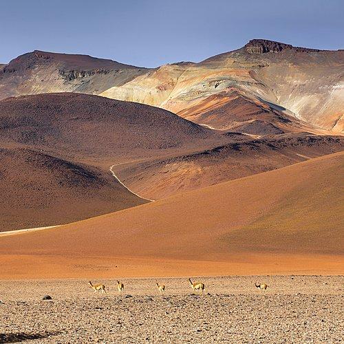 Communauté Andine - Lima -