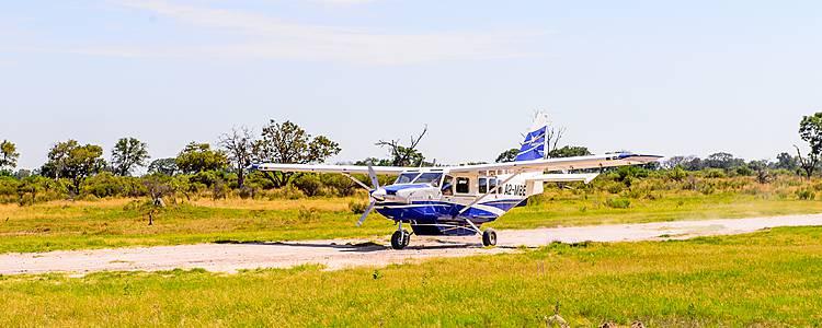 Exklusive Flugsafari zu den Höhepunkten