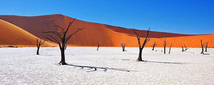 Tra safari e dune in self drive