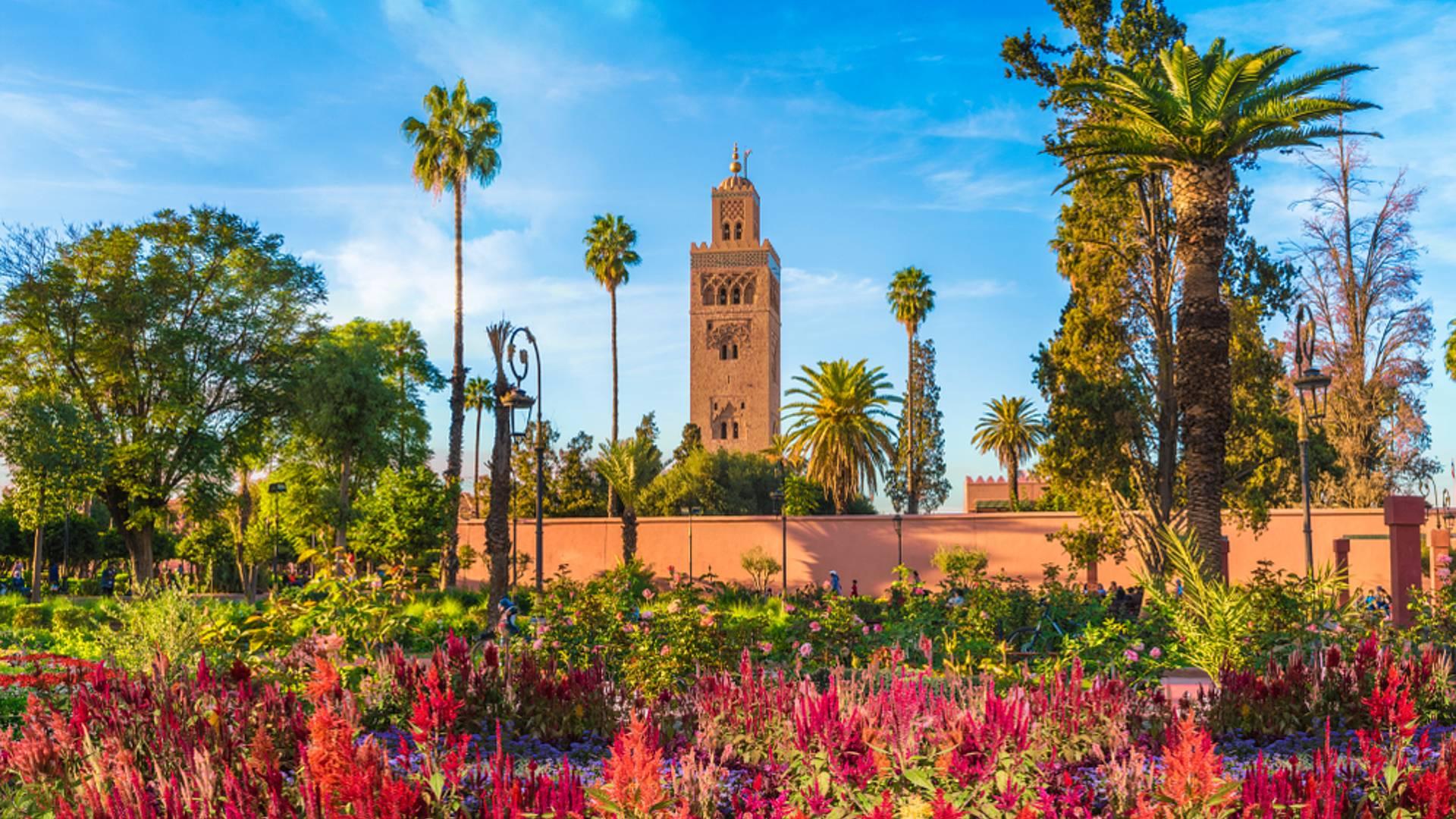 Corazón de Marruecos, naturaleza y desierto