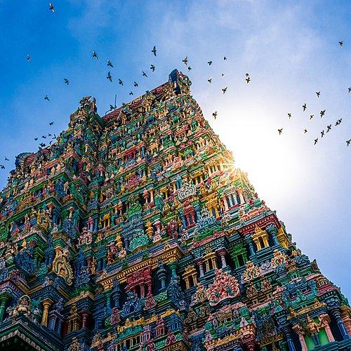 Grand tour de l'Inde du Sud -