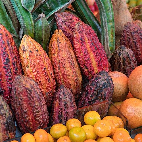 La Route Du Cacao au Pérou - Lima -