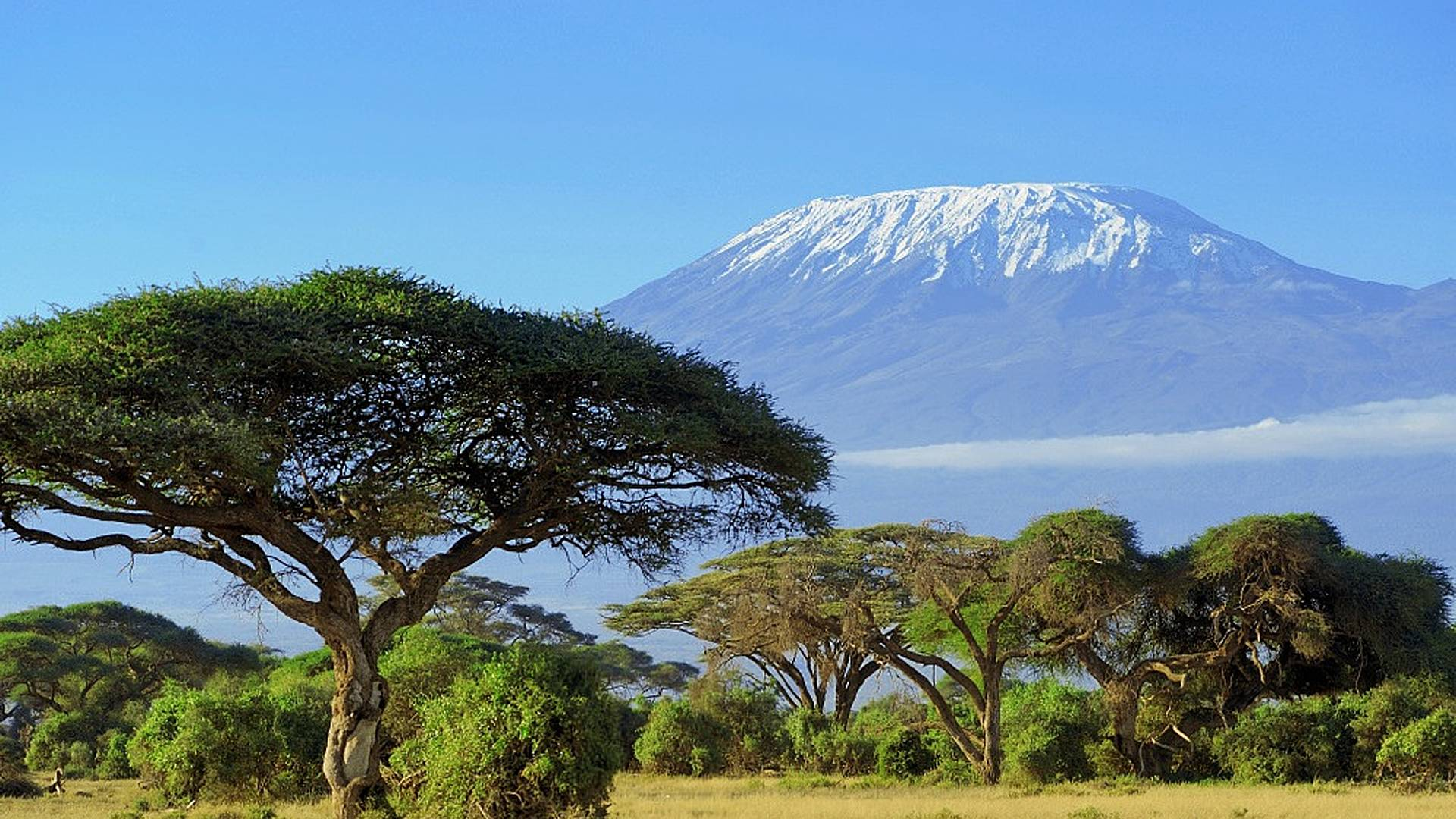 Splendeurs du Kenya, version charme