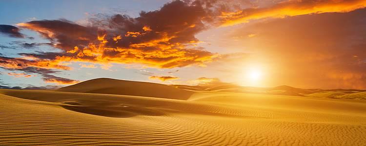 Sahara y oasis con playa