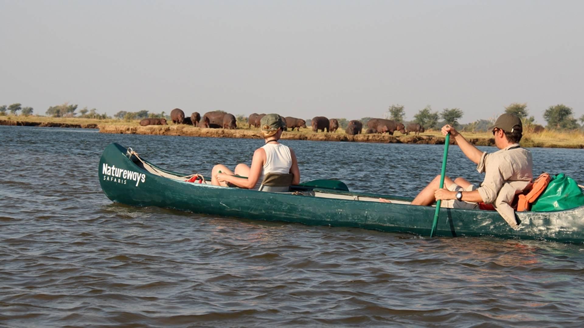 Mana Pools en canoë et à pied