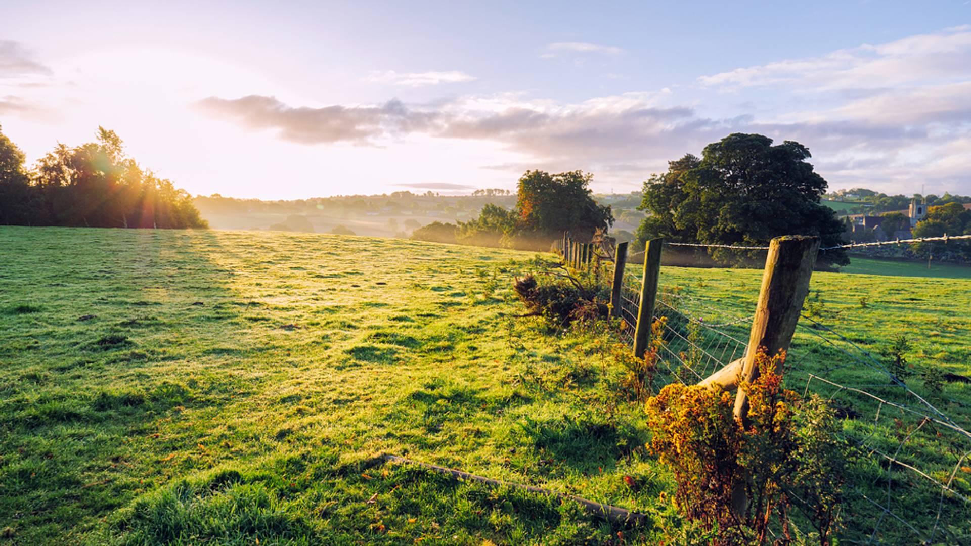 Natur und Entspannung pur