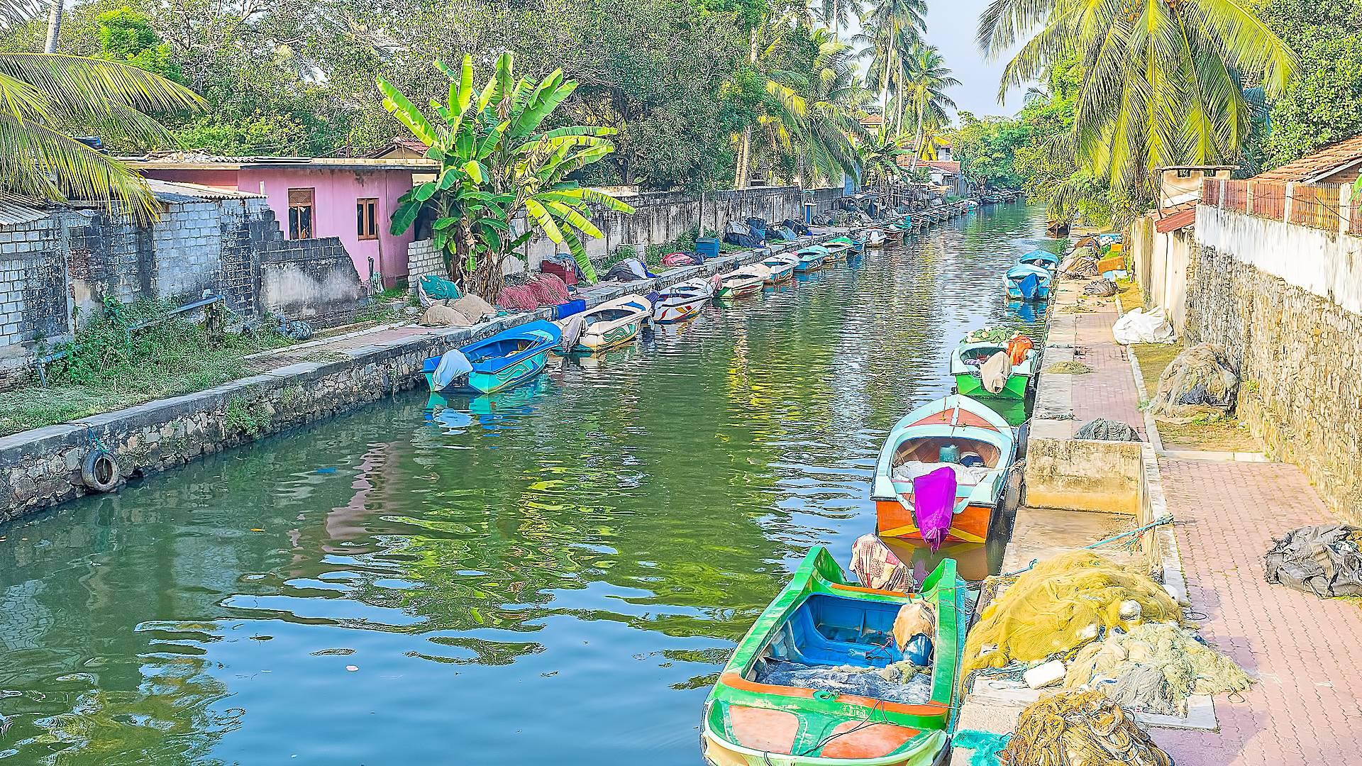 Los ineludibles de Sri Lanka