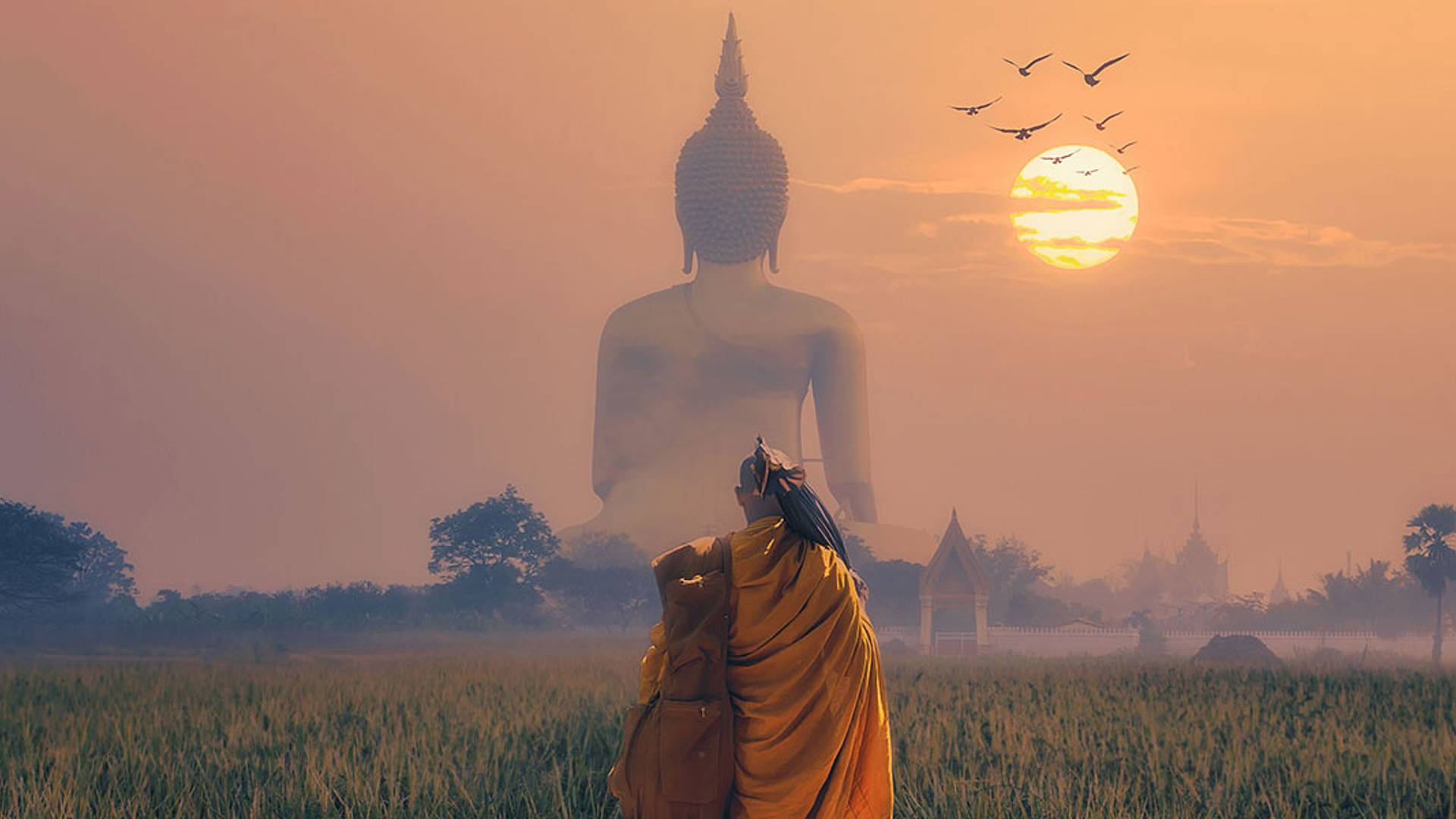 Natur und Kultur von Bangkok bis Chiang Mai