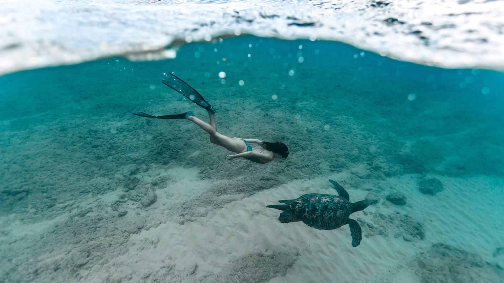 Maui et Kauai, les Jardins d'Eden