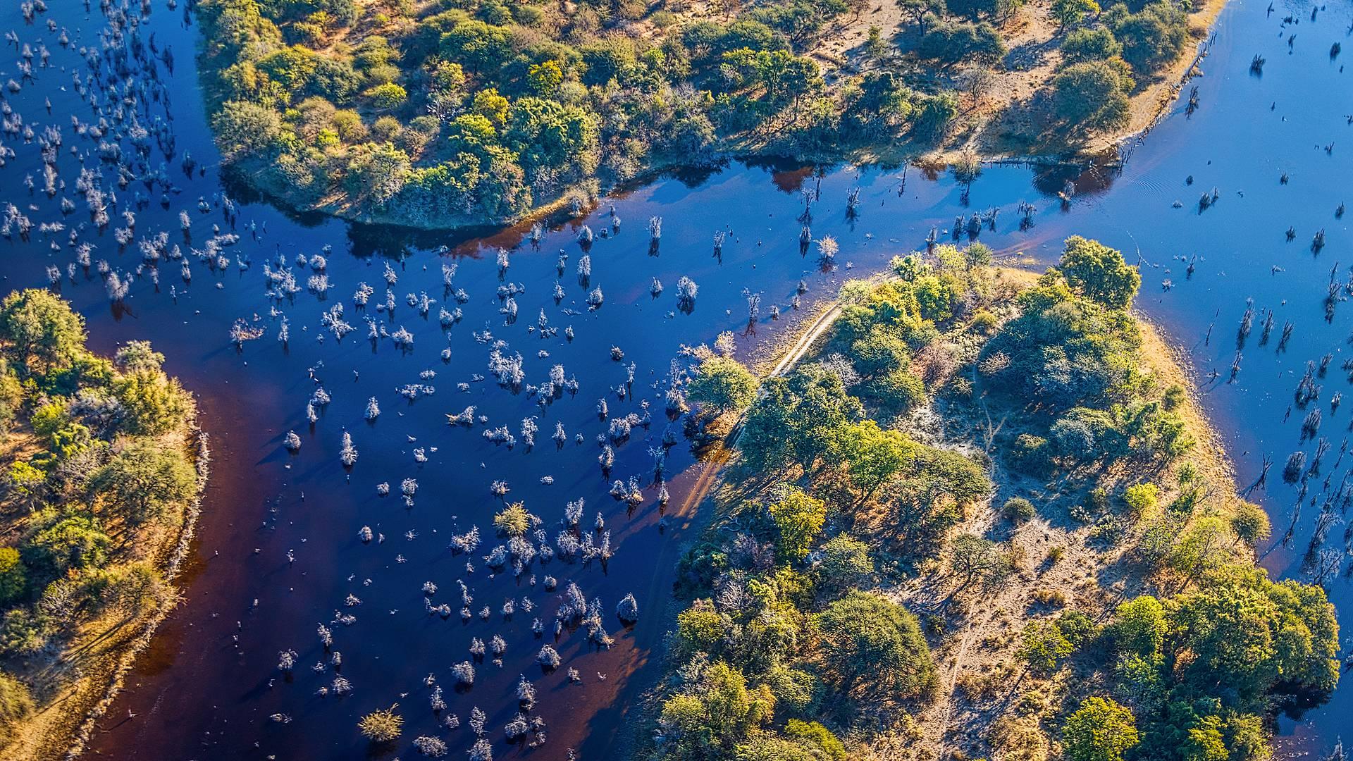 Mille et un Botswana
