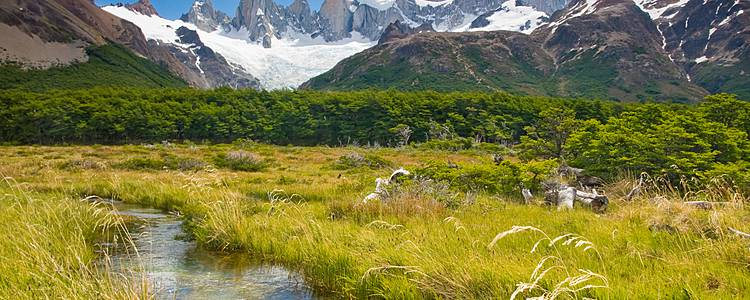 Highlights of Argentina: Iguazu, Patagonia and Buenos Aires