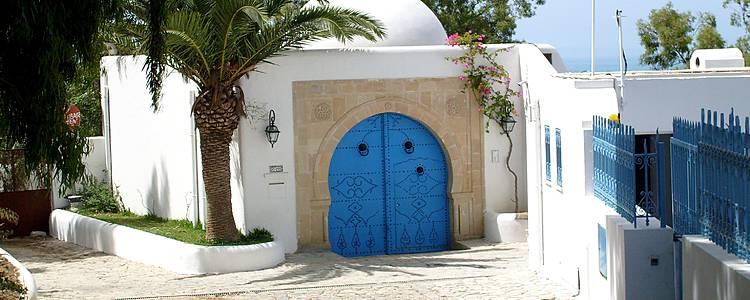 Découverte de Tunis et du Cap Bon