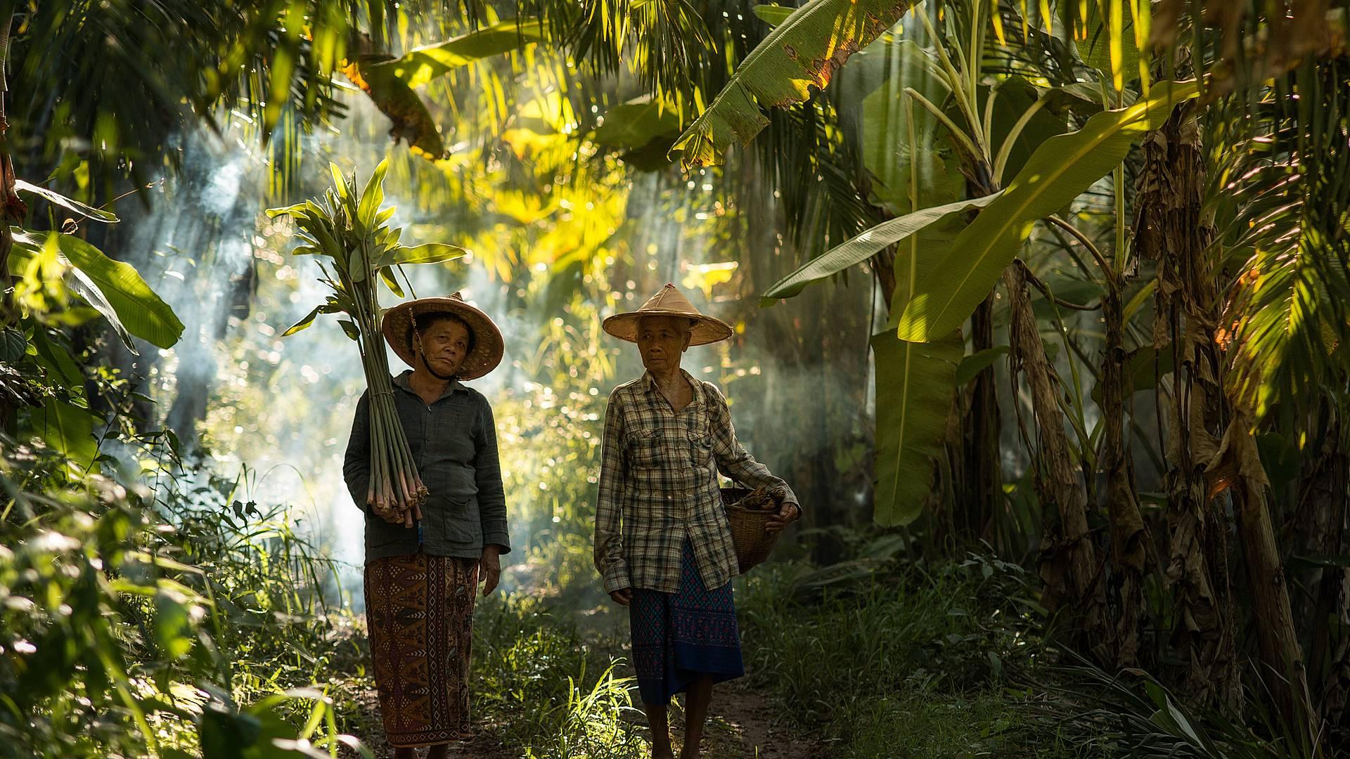 Inmersión local en Myanmar