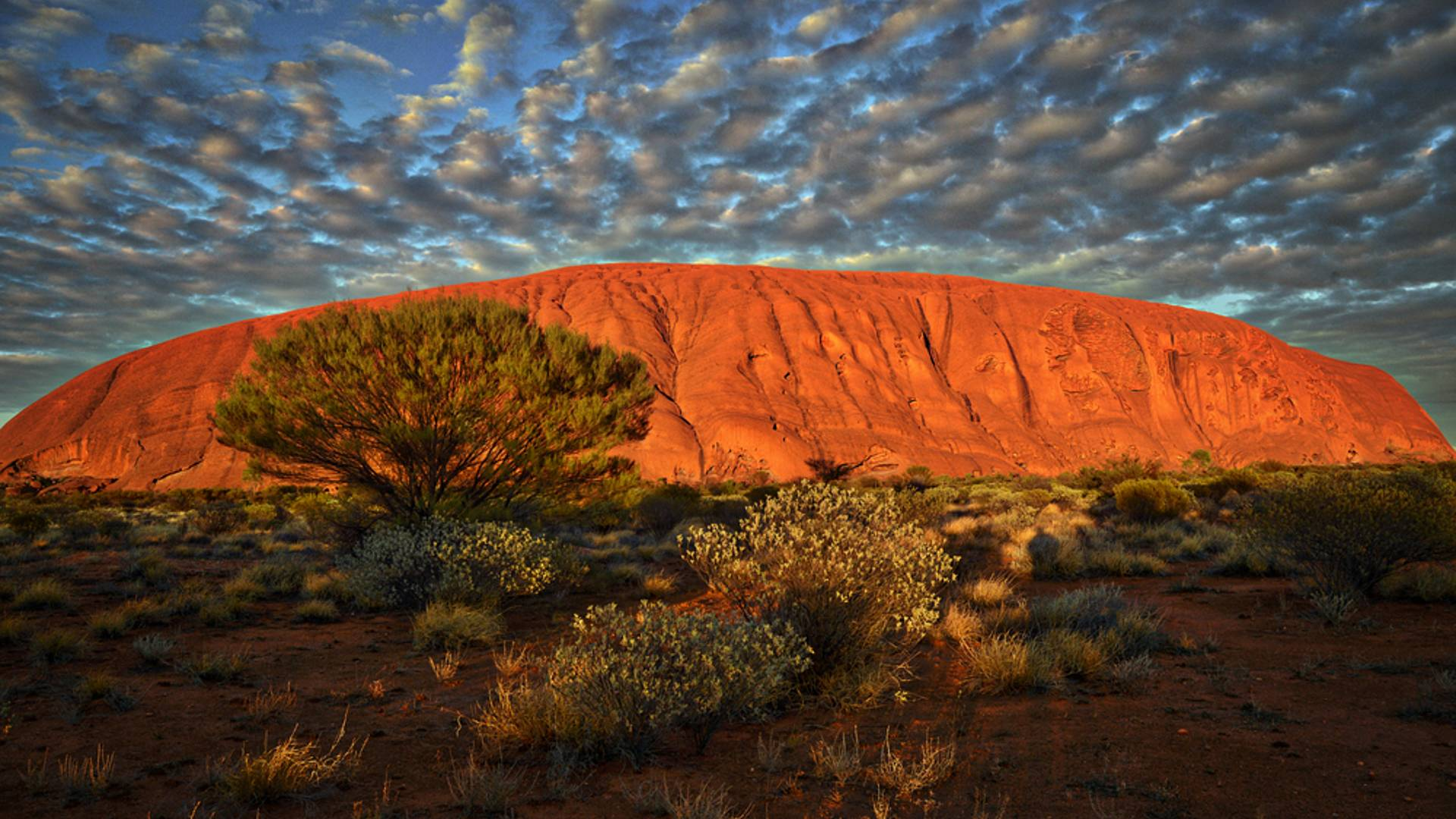 The Red Centre - Abenteuer im Outback