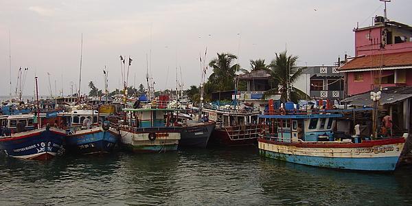 Le port de la lagune de Negombo